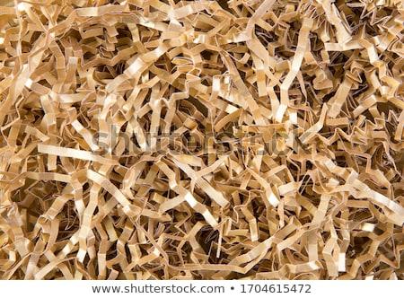 Crinkled paper Stock photo © stevanovicigor