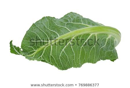 ストックフォト: Fresh Cauliflower With Leaves
