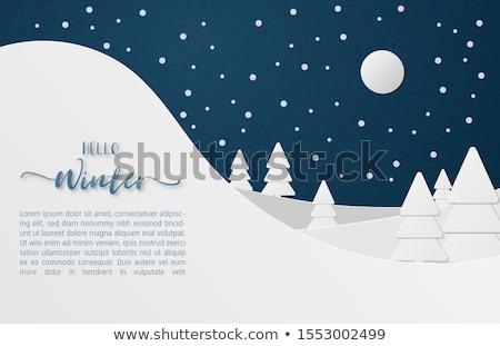 Christmas night snow falls on hill Stock photo © romvo