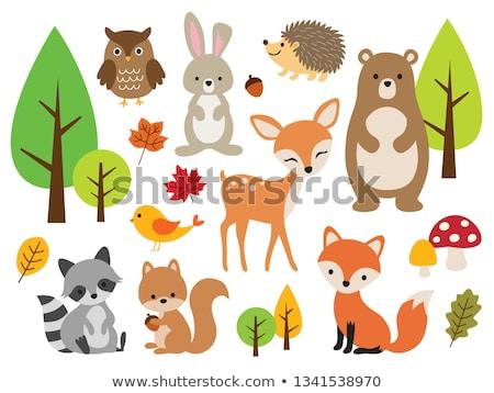Animale salbatice pădure ilustrare peisaj fundal artă Imagine de stoc © bluering