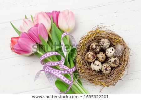 Quail eggs and blossom Stock photo © Karaidel