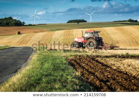 トラクター · フィールド · 暗い · 雲 · 食品 · 自然 - ストックフォト © freeprod