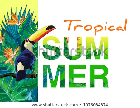 summer sale design with flower toucan and exotic leaves on green background tropical floral vector stock photo © articular