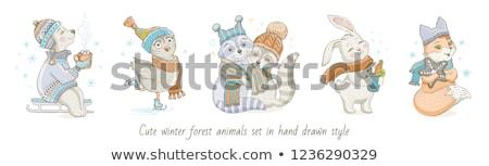 Tél állatok rajz skicc szett hó Stock fotó © artisticco