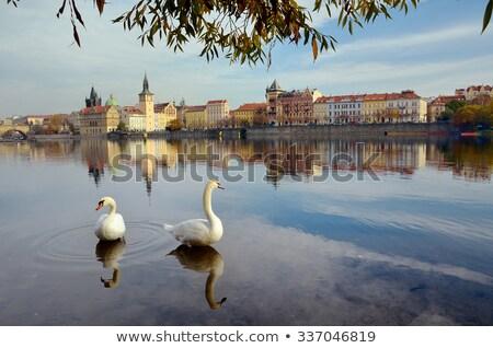 Панорама Прага реке мостами дождь Storm Сток-фото © asturianu