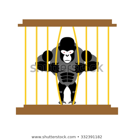 Gorilla in cage in  Zoo. Strong Scary wild animal in captivity.  Stock photo © popaukropa