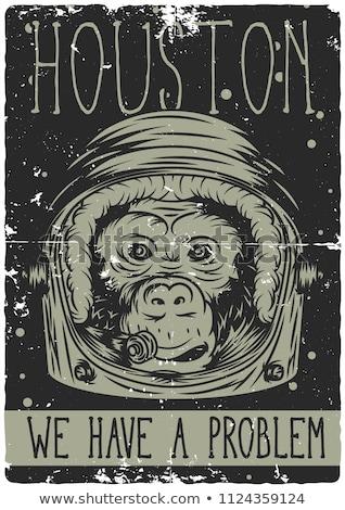 Stock fotó: Rajz · mérges · űrhajós · majom · néz