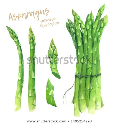 Set of bundled asparagus, paths Stock photo © maxsol7