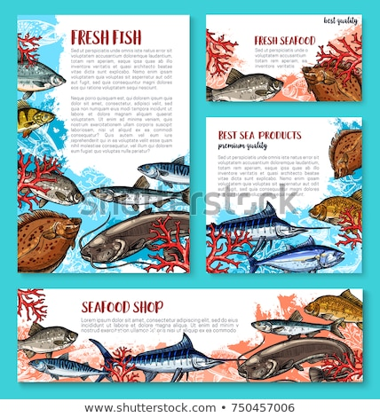 Bass and Bream Fish Posters Vector Illustration Stock photo © robuart