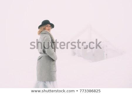 красивой зима портрет декораций женщину Сток-фото © ruslanshramko