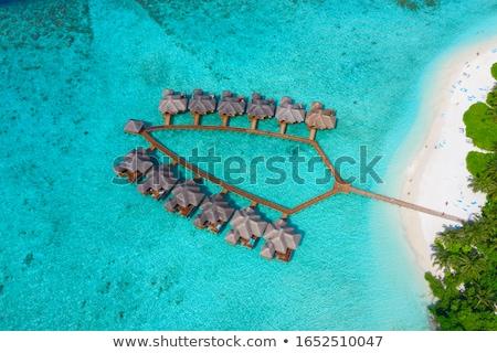 домах · тропические · курорта · пляж · путешествия · туризма - Сток-фото © fyletto