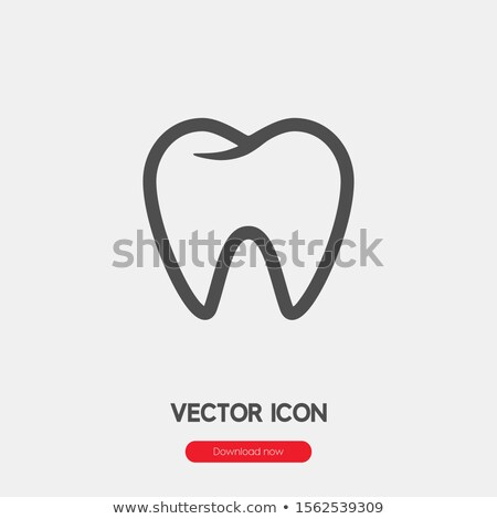 clean tooth line icon set teeth linear style sign for mobile concept and web design healthy tooth stock photo © kyryloff