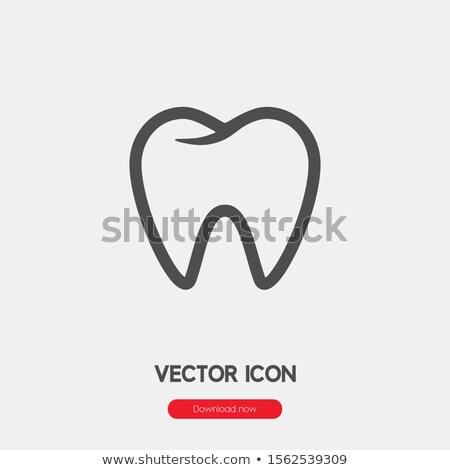 Limpar dente linha dentes linear Foto stock © kyryloff