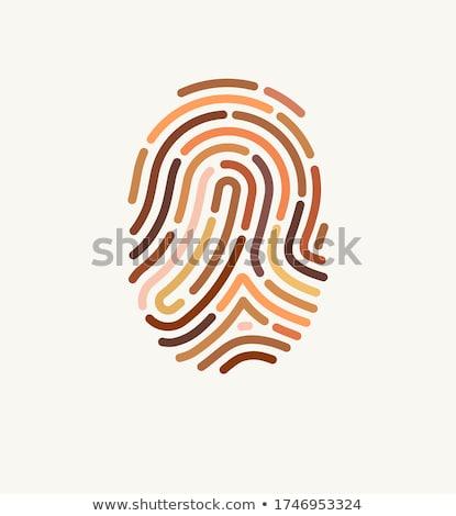 Vingerafdruk print menselijke vinger poster vector Stockfoto © robuart