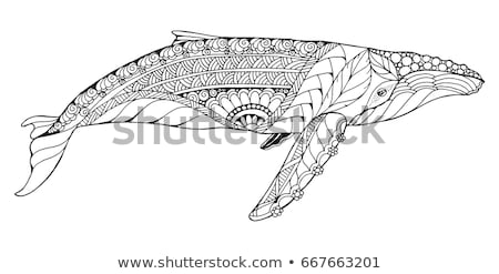 Black Line Art Whale Cartoon on a White Background Stock photo © cidepix
