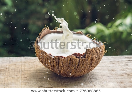 Coconut fruit and milk splash inside it on a background of a palm tree Stock photo © galitskaya