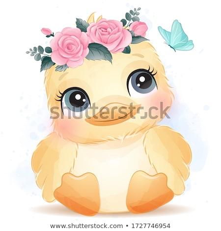 Kártya sablon aranyos csirke illusztráció étel Stock fotó © bluering