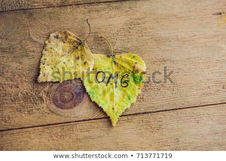 Yellow and green leaf with the inscription OMG on the old wooden background Stock photo © galitskaya