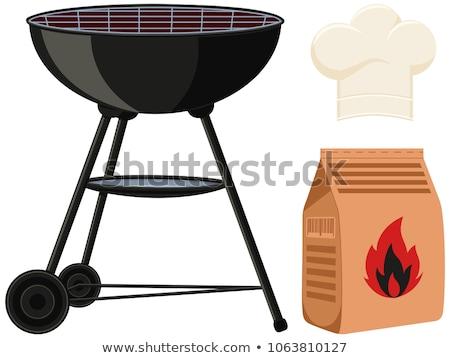 Karikatür etiket kamp ateşi vektör doğa yaz Stok fotoğraf © barsrsind