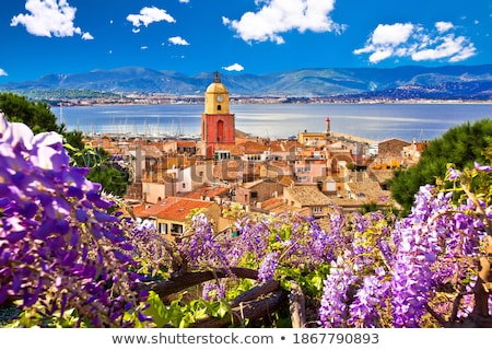 Saint Tropez village church tower and old rooftops view Stock photo © xbrchx