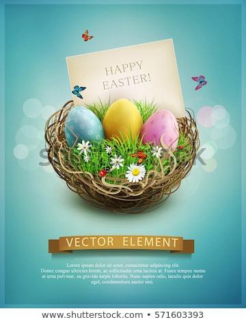Illusztráció izolált kosár húsvéti tojások fehér húsvét Stock fotó © natali_brill