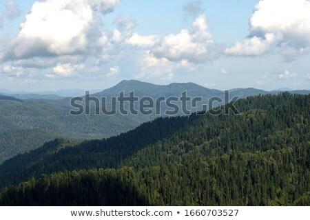 Felhős égbolt fölött vadon hegy terjedelem Stock fotó © 3523studio