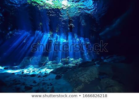 Cenote Rays of Light Stock photo © ca2hill