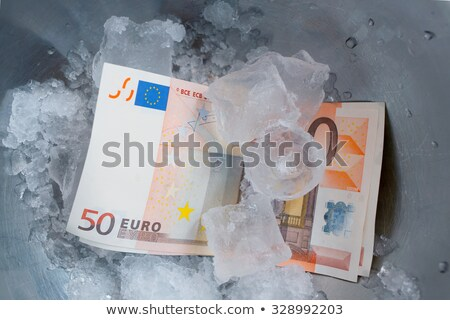 Sign EURO frozen in the ice Stock photo © a2bb5s