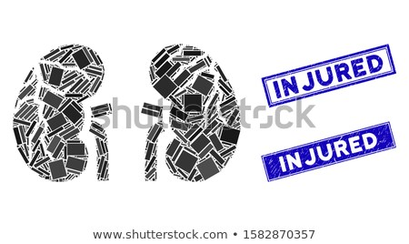 human kidney with grunge texture stock photo © lightsource
