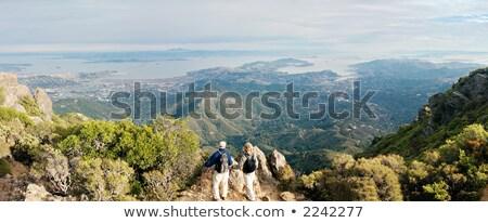 California coastline in Tamalpais state park, Marin county Stock photo © snyfer