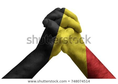 Pięść malowany kolory Belgia banderą niski Zdjęcia stock © vepar5