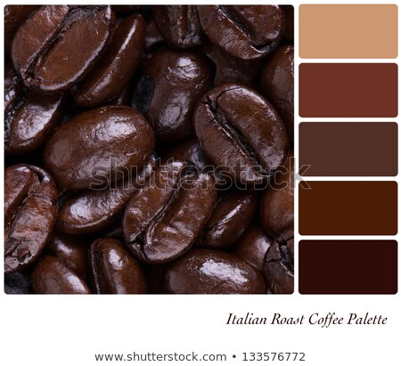 Coffee beans colour palette swatch Stock photo © REDPIXEL