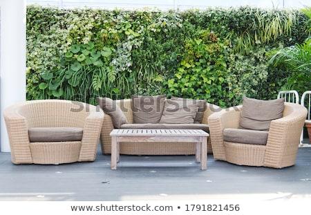 Luxury rattan Garden furniture Stock photo © hanusst