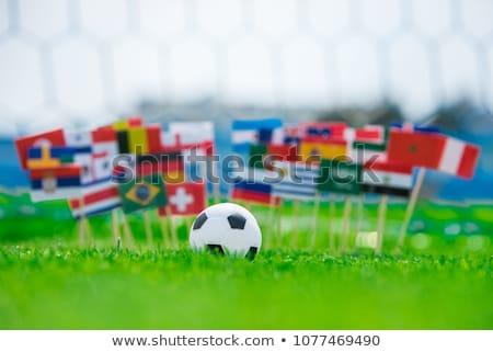 Futballabda Portugália zászló pálya futball világ Stock fotó © stevanovicigor