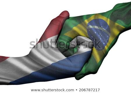 Foto d'archivio: Stretta · di · mano · Brasile · Paesi · Bassi · mano · riunione · sport