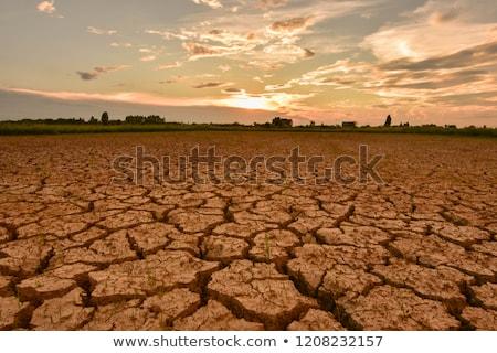 干ばつ 土地 高い 地球 雨 ストックフォト © pedrosala