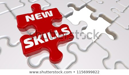 New Skills on Red Puzzle. Stock photo © tashatuvango
