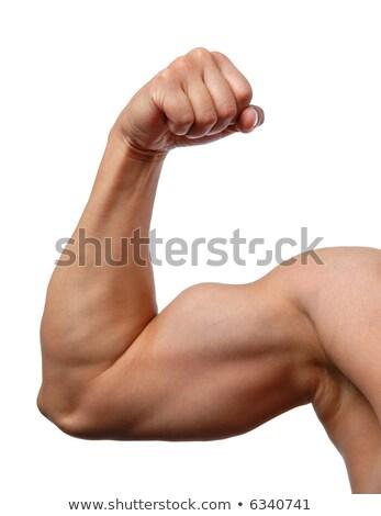 若い男 · 上腕二頭筋 · スポーツ · ボディービル - ストックフォト © dolgachov