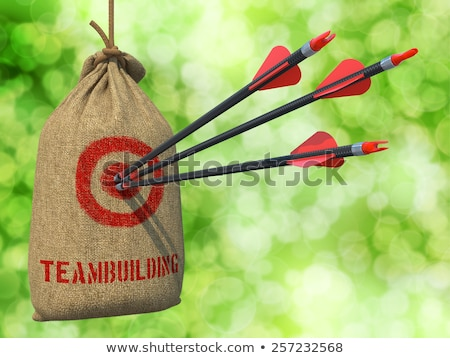 Teambuilding - Arrows Hit in Red Target. Stock photo © tashatuvango