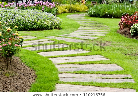 Landscaping in the garden. The path in the garden. Stock photo © art9858