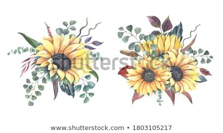 Najaar vallen grens afbeelding illustratie Stockfoto © Irisangel