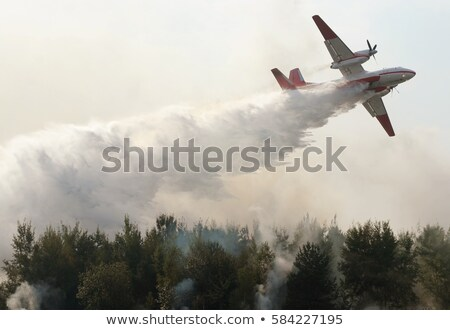 Damaged Fighter Plane Stock photo © Bigalbaloo