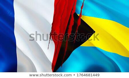 França Bahamas bandeiras quebra-cabeça isolado branco Foto stock © Istanbul2009