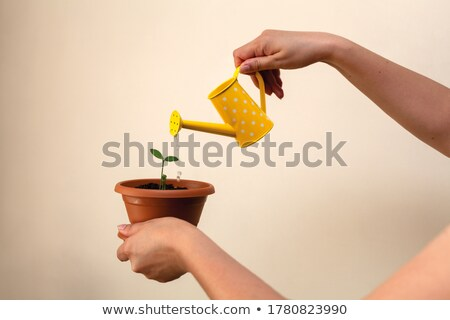 Woman pouring tree in pot with green watering can Stock photo © deandrobot