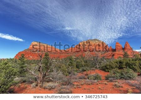 Zandsteen Rood rock land natuur Stockfoto © wildnerdpix