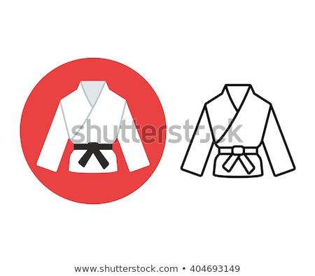 karate · vadászrepülő · verekedés · sport · szimbólum · izolált - stock fotó © rastudio