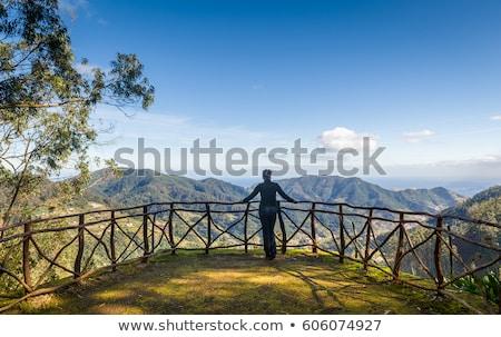 マデイラ 高い 山 島 岩 青空 ストックフォト © compuinfoto