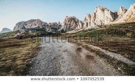 Macera toprak yol kir çizim karikatür yaşam tarzı Stok fotoğraf © artisticco