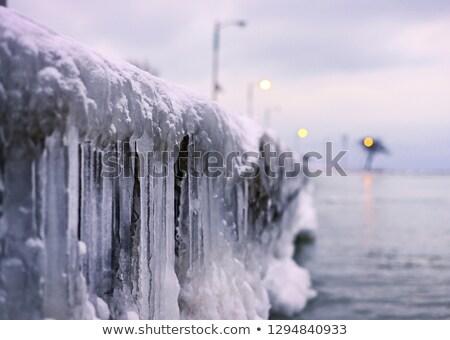 Lago grande inverno albero ghiaccio relax Foto d'archivio © kb-photodesign
