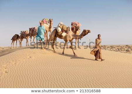 Kettő arab emberek tevék sivatag illusztráció Stock fotó © bluering